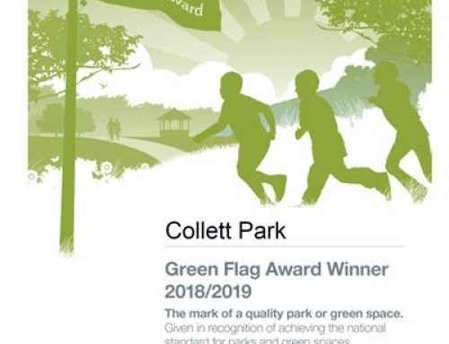 Collett Park awarded a Green Flag!